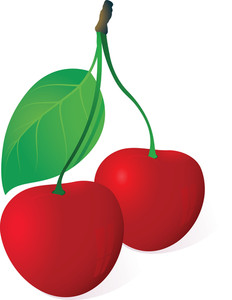 Cherries. Vector. Easy To Edit, No Gradient Meshes Used.