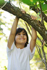 Child in nature holding tree arm