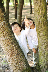 Children at park pointing on tree