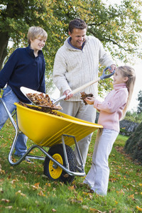 Children helping father to collect autumn leaves in wheelbarrow