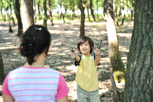 Children playing in wonderfull forest and collecting small pieces of wood