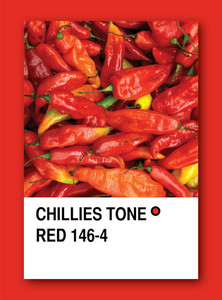 Chillies Tone Red. Color Sample Design