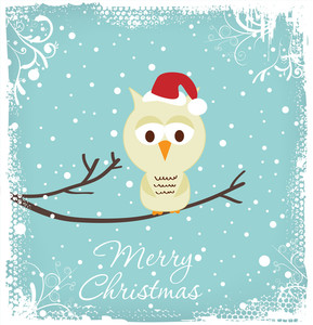 Christmas Greeting - Owl In A Christmas Hat