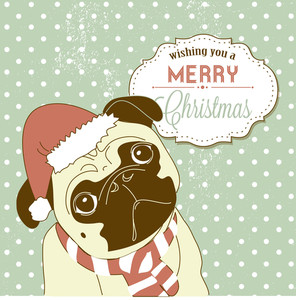 Christmas Pug! Cute Little Gog In Santa Hat
