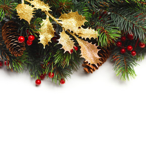 Christmas fir with decorations and space for text