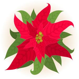 Christmas Star. Vector.