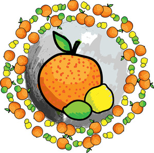 Citric Fruit. Vector Illustration