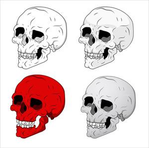 Classic Skulls Vector