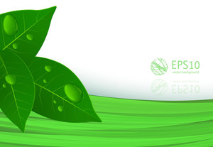 Clear Green Abstract. Vector Background.