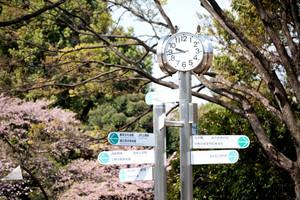 clock in japan park