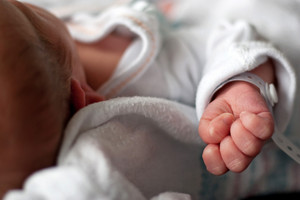 Close up of a newborn infants baby hand and wristband shortly after birth. Shallow depth of field.