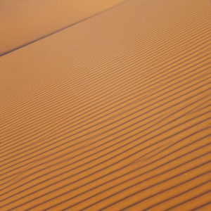 Close up of a wind-patterned sand dune in the desert