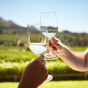 Close up of hands toasting wine outdoors. Celebrating with white wine with vineyard in background.