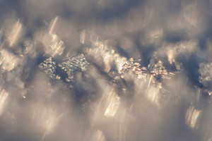 Close up of snow crystals in golden sunset light