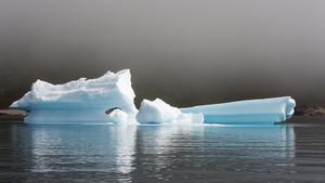 Close up of sunlit icebergs along the foggy coast