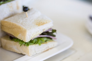 Close up sandwich on white plate