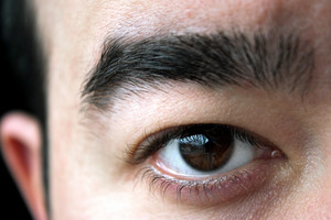 Closeup of a mans brown eye and eyebrow.  Shallow depth of field.