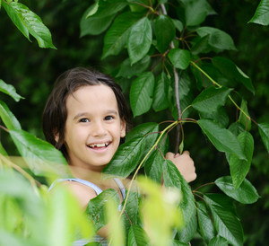 Closeup portrait of a little happy boy hiding in tree arms and leaves