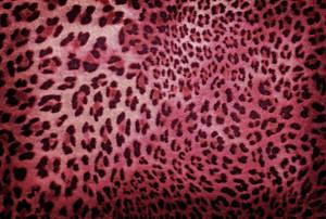 Cloths Texture 59