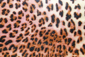 Cloths Texture 60