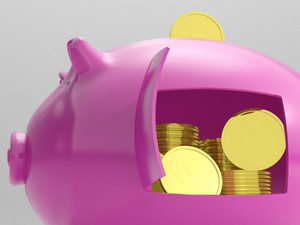 Coins In Piggy Shows Savings And Investment