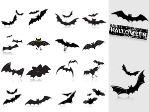 Collection Of Bats