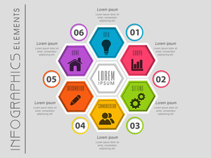 Colorful business infographics elements with different web and business icons for professional presentation.