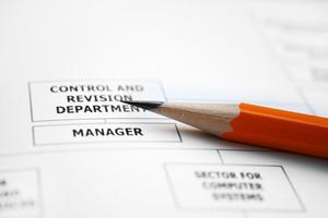 Company Organization Chart