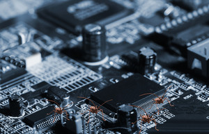 computer bugs and circuit-boards