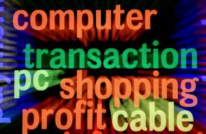 Computer Shopping Profit