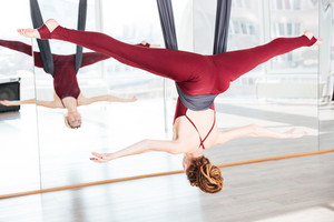 Concentrated young woman doing pose of antigravity yoga using hammock