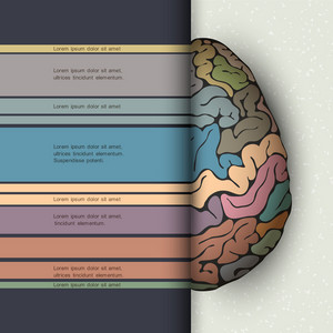 Concept Of Human Brain