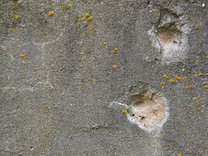 Concrete And Stone Cracked 11 Texture