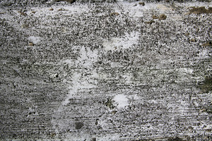 Concrete And Stone Grunge 20 Texture