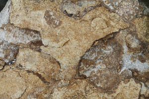 Concrete And Stone Rough 14 Texture