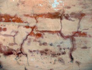 Concrete Background Texture 20