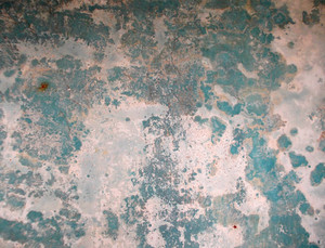 Concrete Background Texture 23