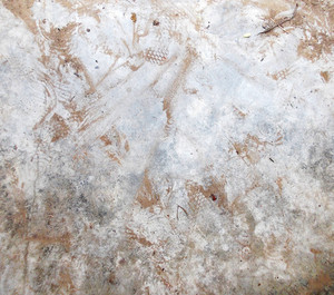 Concrete Background Texture 31