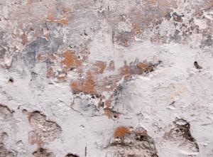 Concrete Background Texture 50
