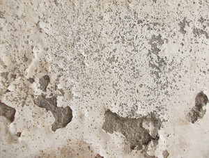Concrete Background Texture 56