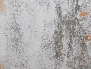 Concrete Background Texture 60