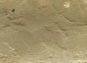 Concrete Background Texture 62