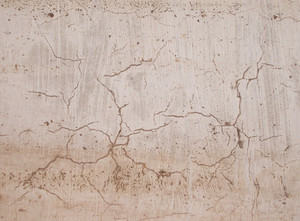 Concrete Background Texture 74