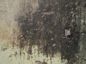 Concrete Background Texture 79