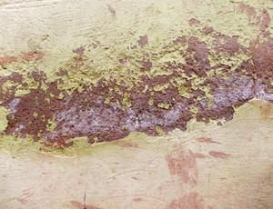 Concrete Background Texture 85