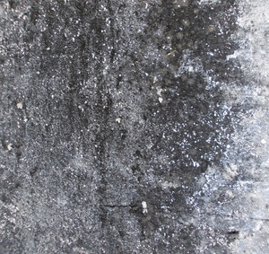 Concrete Background Texture 90