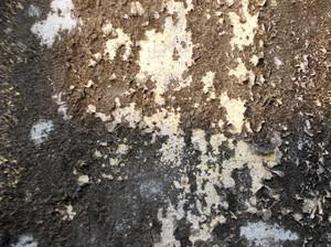 Concrete Surface 67