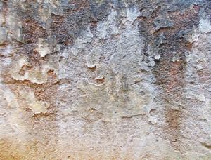 Concrete Texture 11