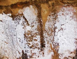 Concrete Texture 16