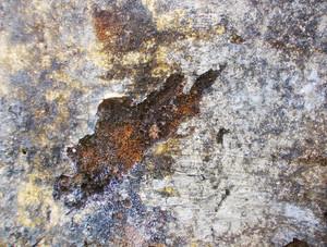 Concrete Texture 3